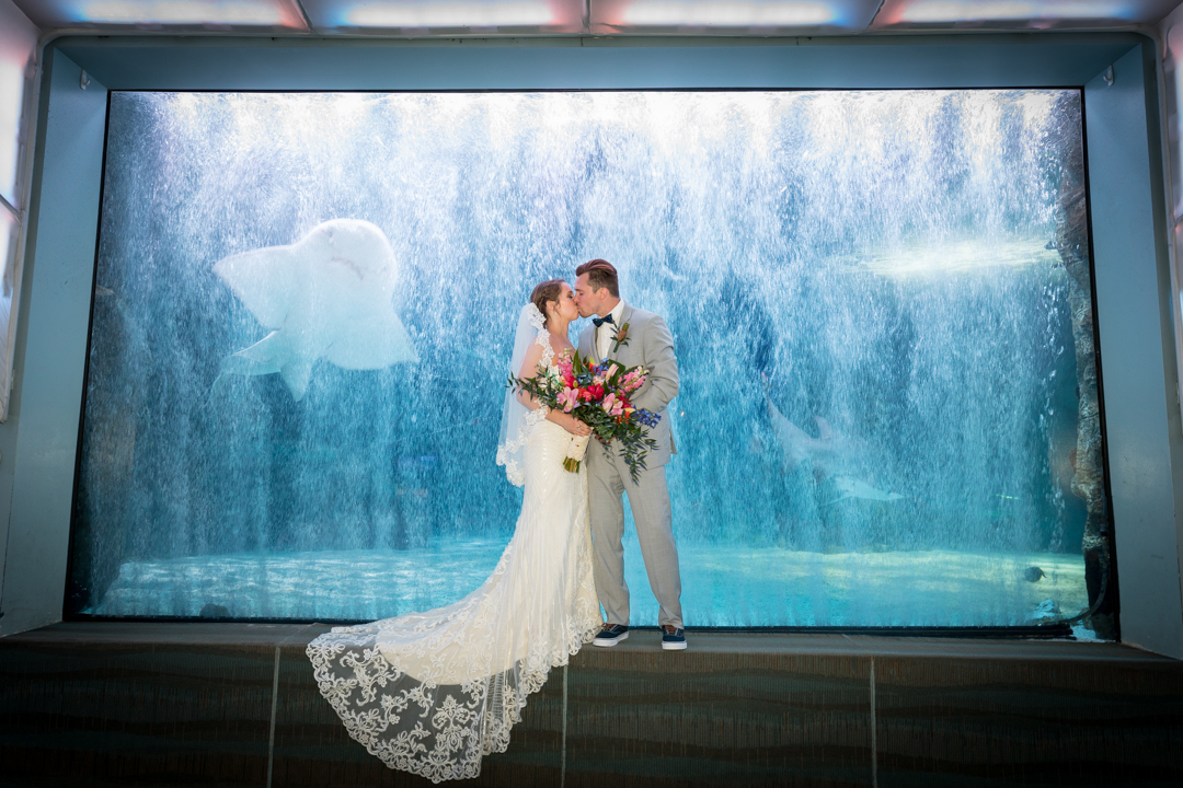 Newport Aquarium Weddings